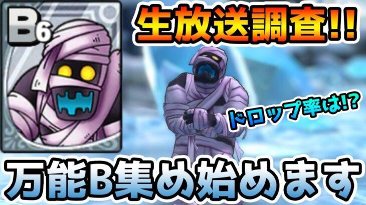 【ドラクエタクト】(Live2/12)マミードロップ率調査!! 果たして効率は!?【DQT】
